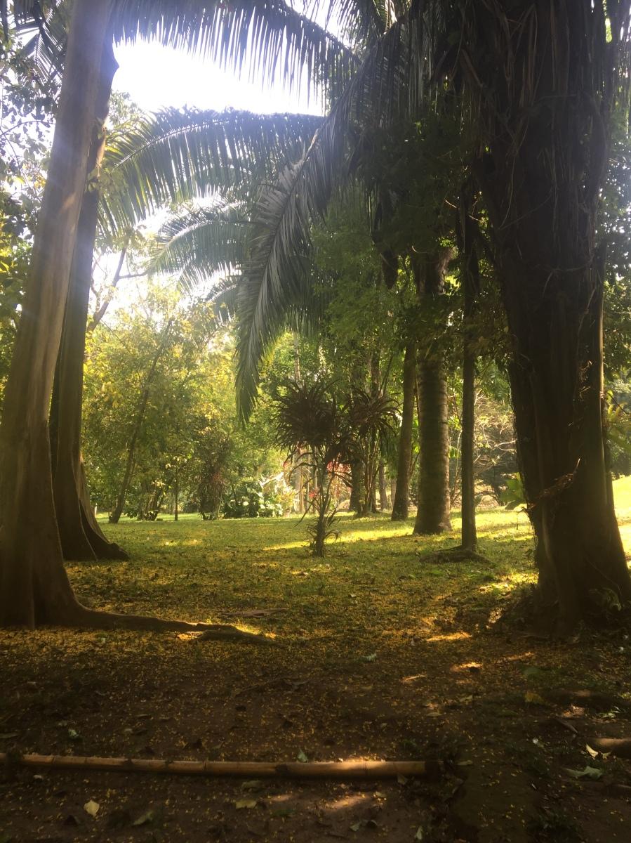 Cómo Puedo Empezar ... Mi Reflexion de Mi 6 Meses en Guatemala